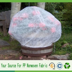 plant protect cover