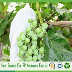 agriculture non woven material